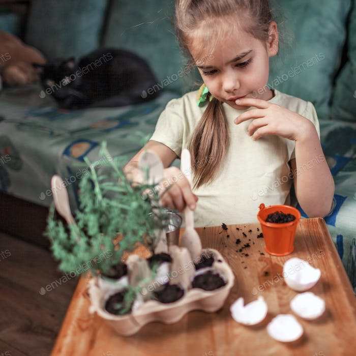 Pretty schoolgirl growing kitchen herbs in the eggshell, zero waste gardening, greenhouse