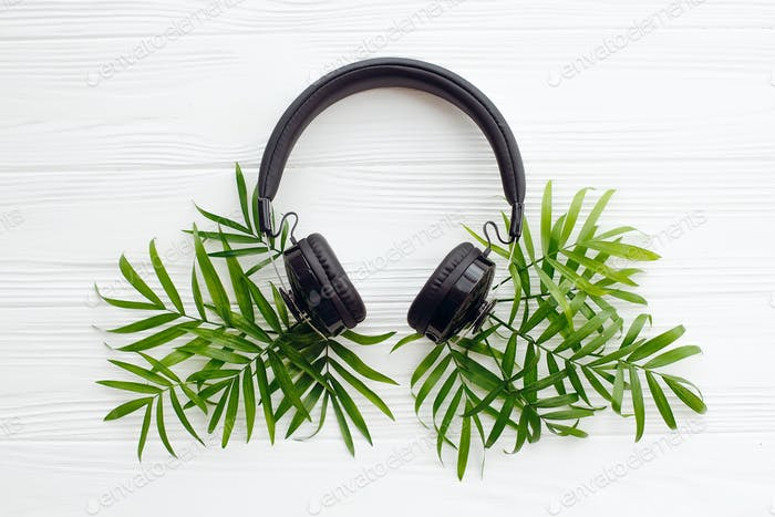 Stylish black headphones with green palm leaves on white wooden background