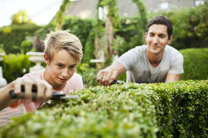 Father and son pruning plants in garden