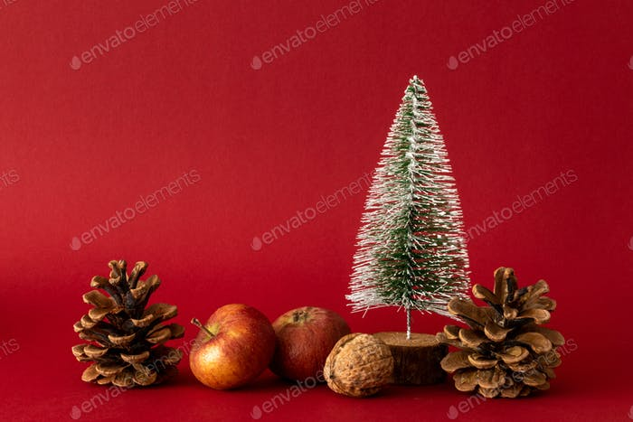 Christmas decoration with a fir tree on red background