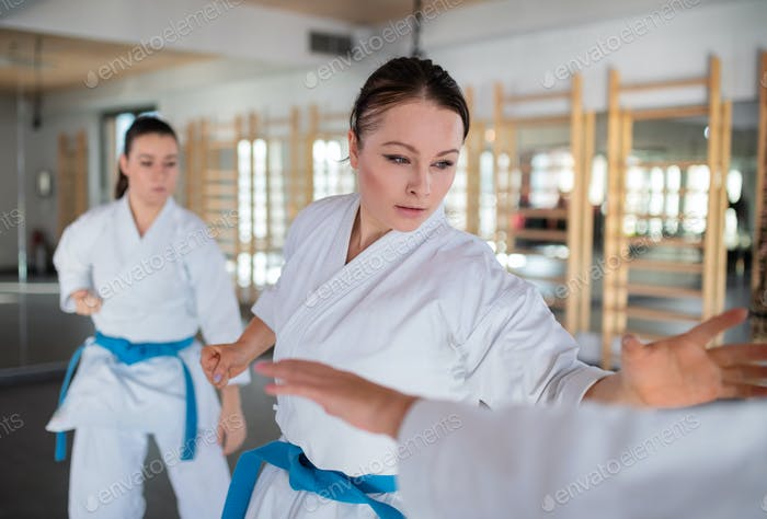 Group of young women practising karate indoors in gym