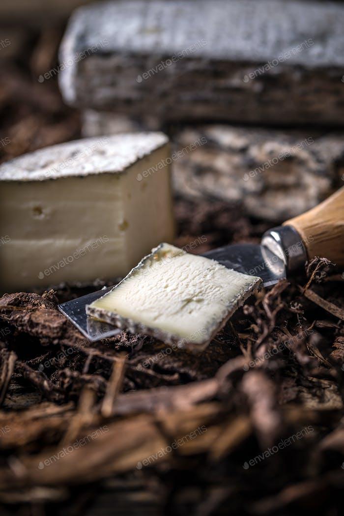 Brie or camembert