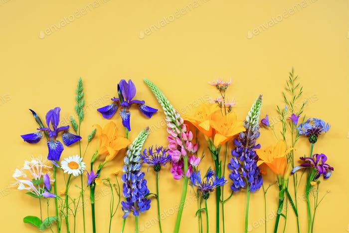 Bright Summer Composition of Flowers