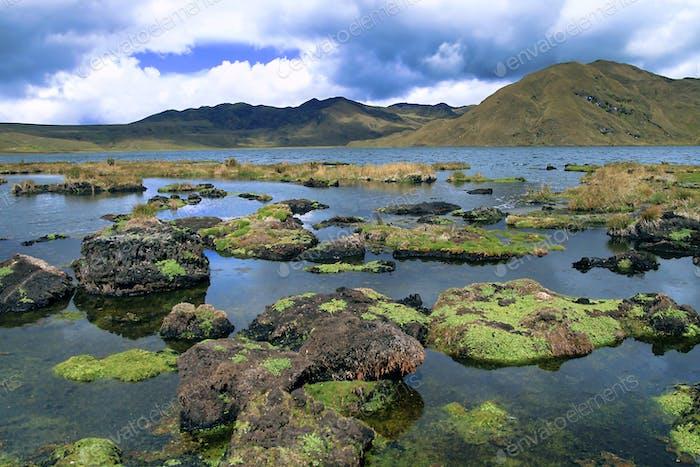 Parque Nacional El Cajas, Ecosistema de pastizales, Humedal Ramsar, Provincia de Azuay, Ecuador, América
