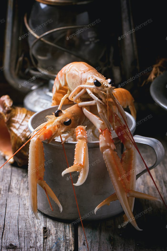 Langoustines in metal cup
