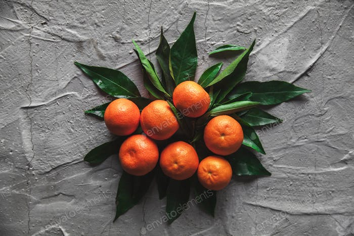 Tangerines (oranges, mandarins, clementines, citrus fruits) with leaves on gray cement background