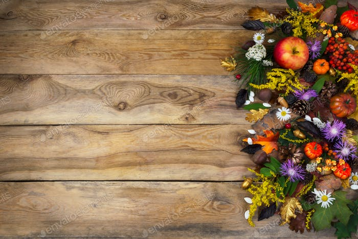 Thanksgiving background with autumn leaves, yellow and purple fl