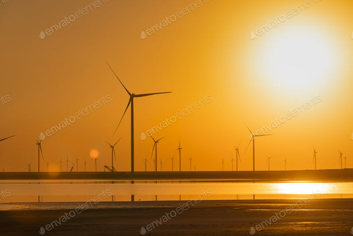 Wind turbines on the seashore at sunset. Green energy concept