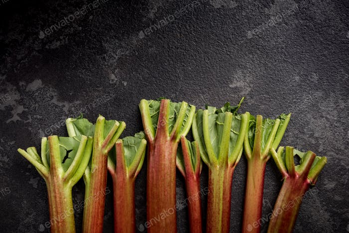 Market fresh rhubarb steams on dark slate