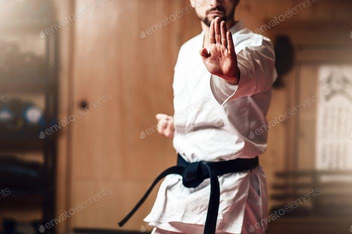 Kampfsportmeister auf Kampftraining im Fitnessstudio