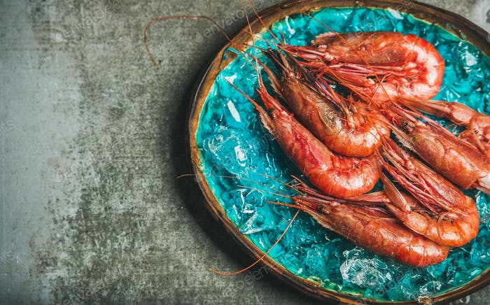 Raw uncooked red shrimps on chipped ice, grey concrete background