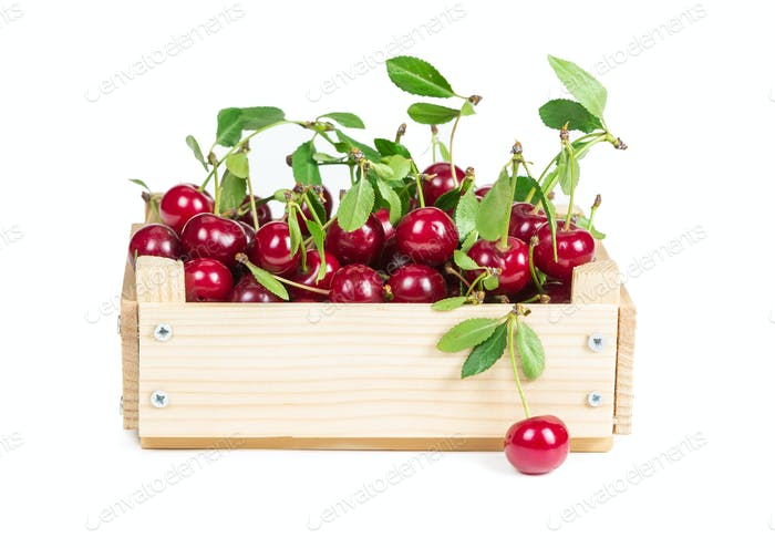 Cherry in wooden box