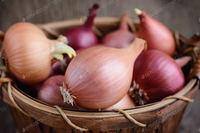 Dry bulb onions in a basket on wooden background