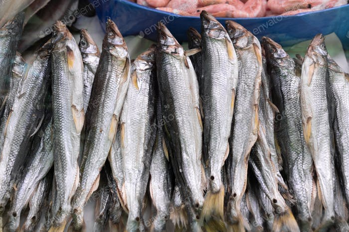 Nahaufnahme von getrockneten gesalzenen Stinkfisch auf Theke am Fischmarkt