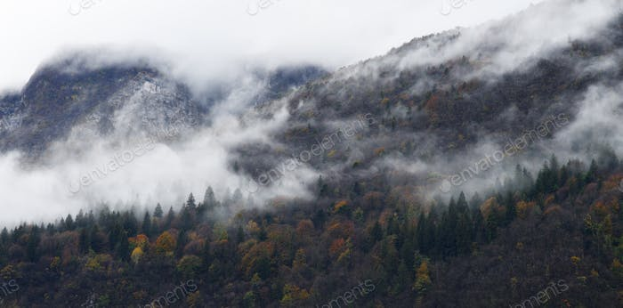 foggy autumn mountains