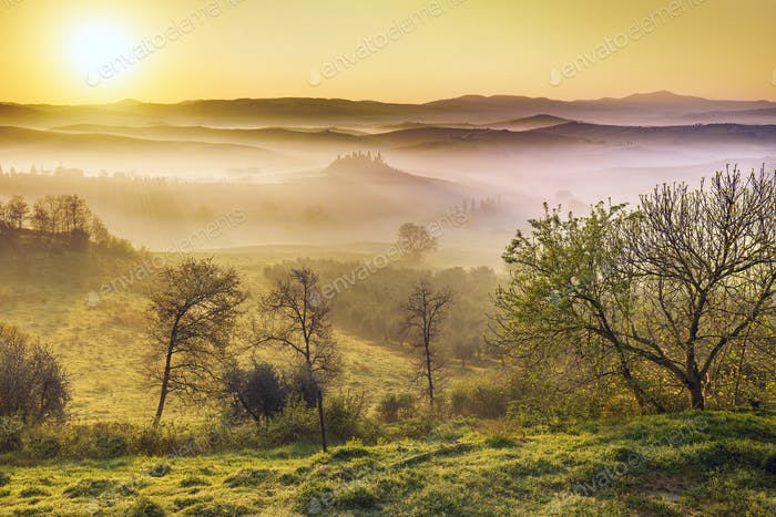 sunlight at dawn of a misty morning in Tuscany