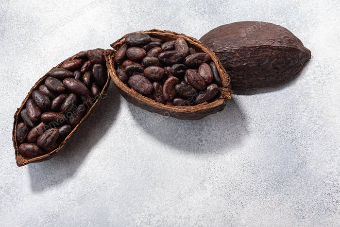 Split fermented cocoa pod with shelled cacao beans atop light grey backdrop, top view,  copy space