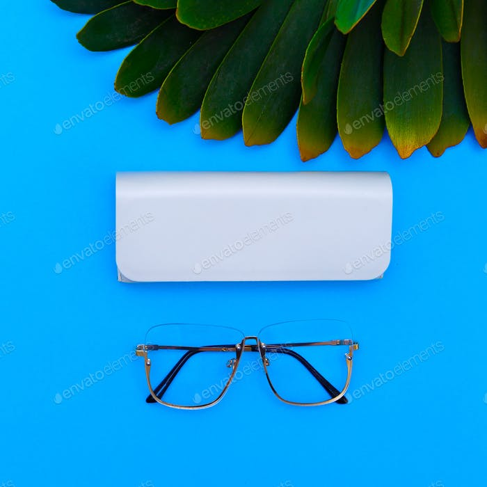 Fashion Glasses. Stylish Eyewear accessory. Flat lay Minimal