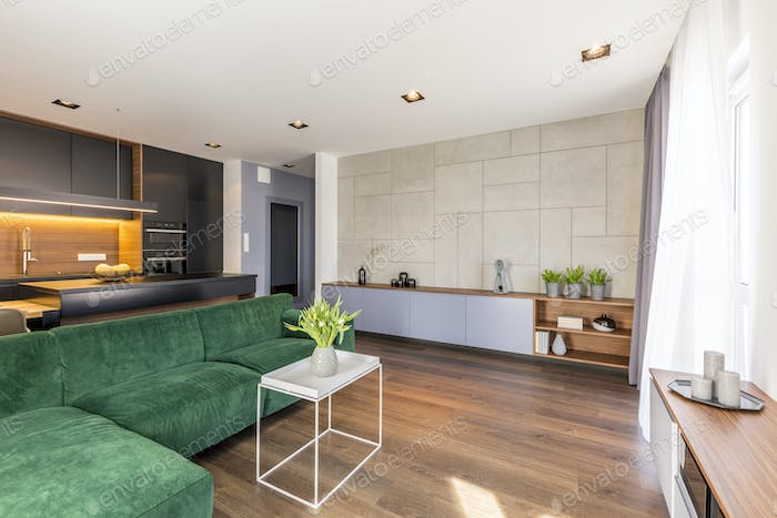 Spacious green apartment interior