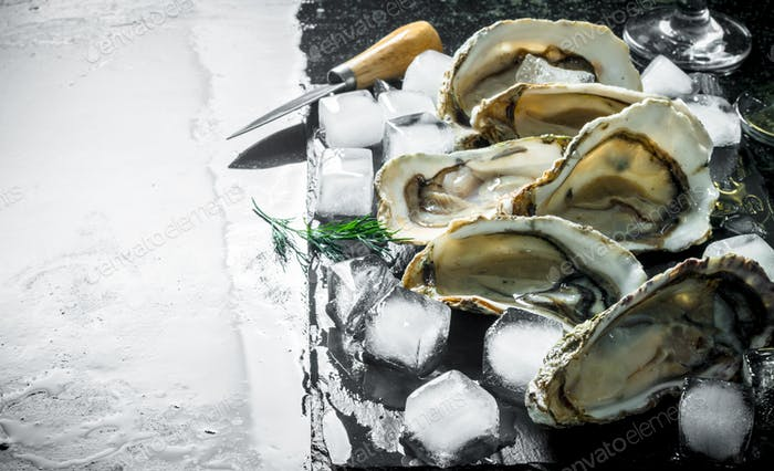 Delicious fresh oysters with a knife and pieces of ice.