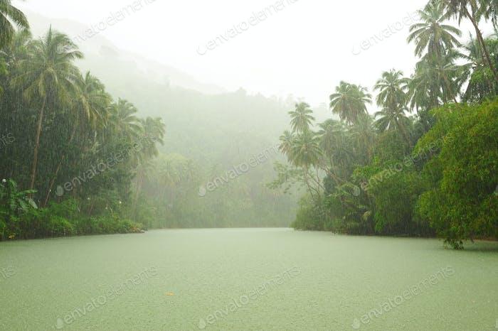 Tropischer Regen über dem Fluss