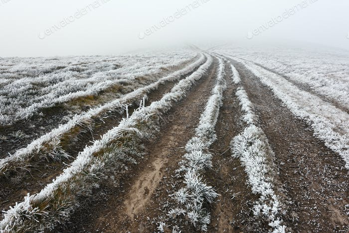 Fantastic autumn landscape with frost