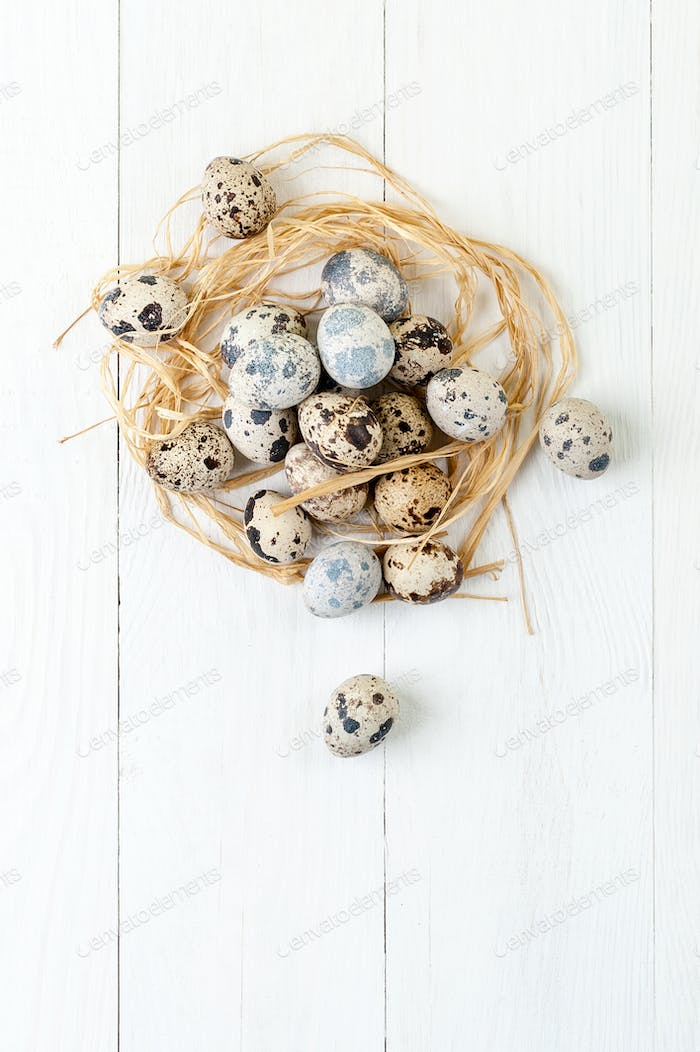 Fresh quail eggs in a nest of hay in a white wooden table.