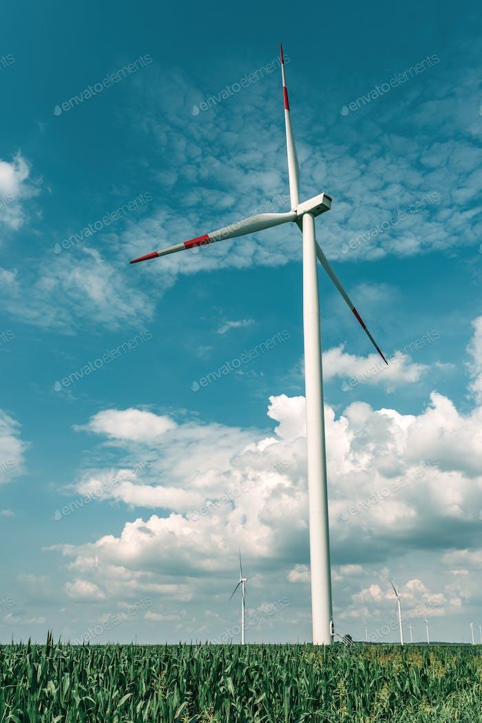Wind turbine on modern wind farm