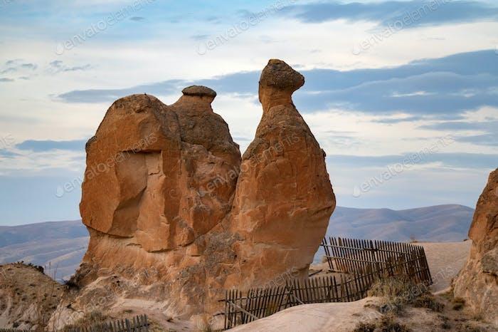 Landskape view on Camel Rock in the Cappadocia, Turkey