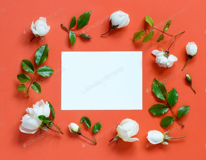 Flowers on a red background