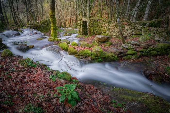 Streams through ruins