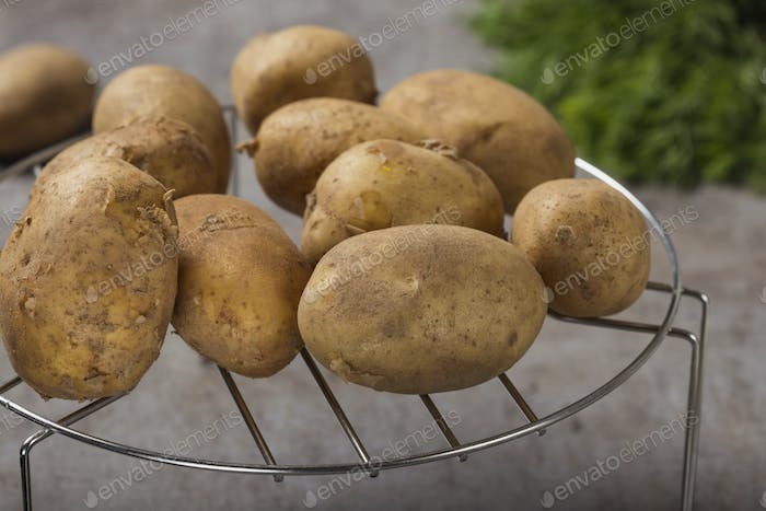 Group of new potatoes
