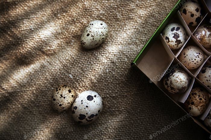 Quail eggs in carton box on a sackcloth. View from above