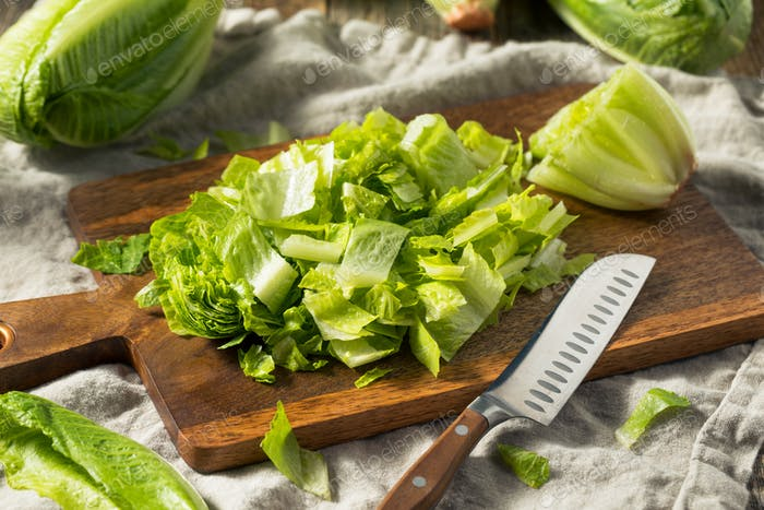 Raw Green Organic Cut Up Romaine Lettuce