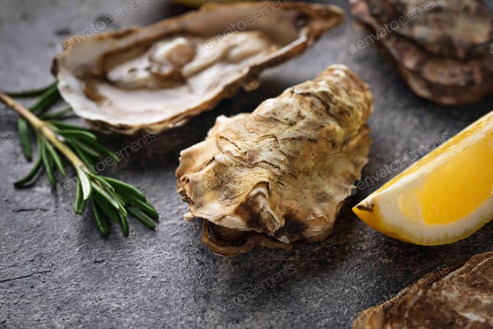 Fresh oysters with lemon and rosemary
