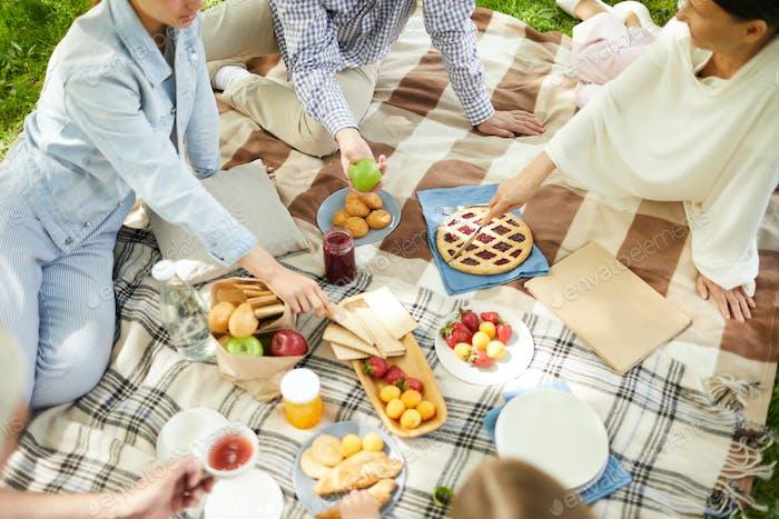 Eating picnic food