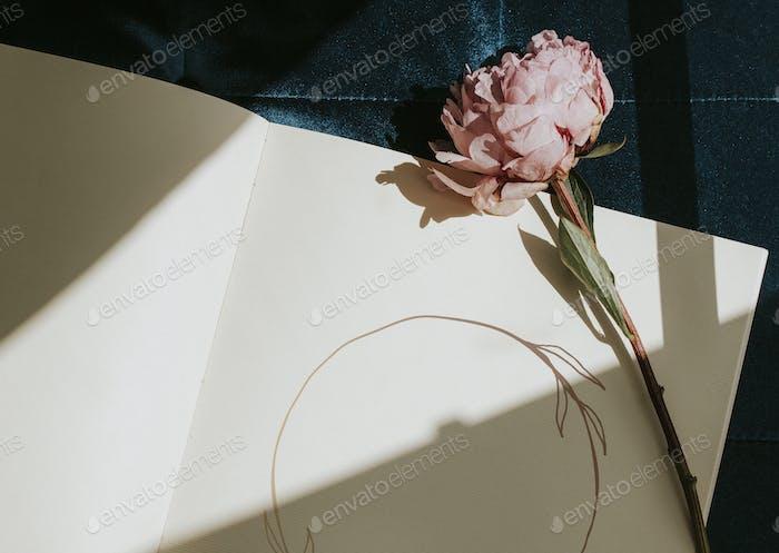 Tagebuch mit einer rosa Pfingstrose Sarah Bernhardt