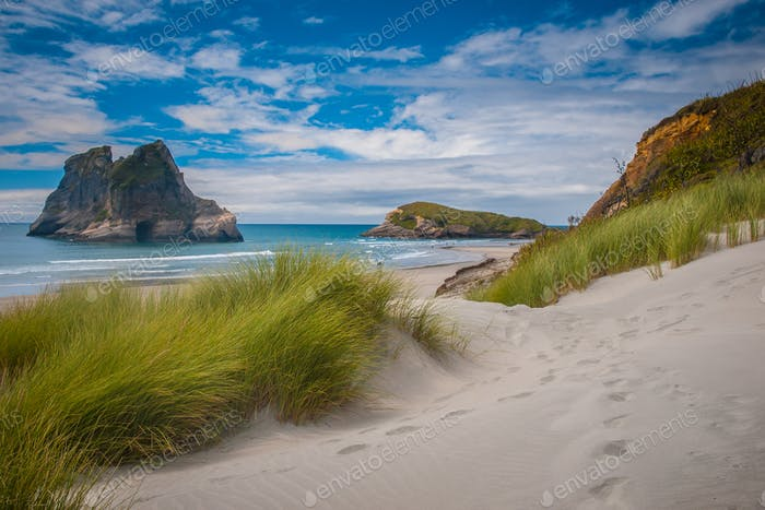 Inviting path Dune vegetation at Famous Wharariki Beach