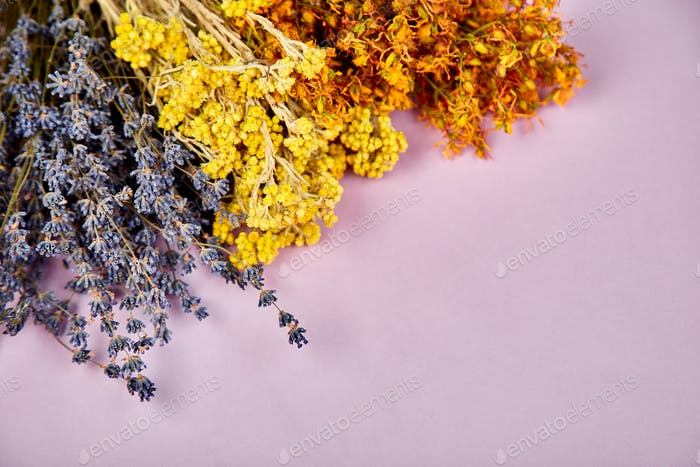 Frame from dry herbs flower