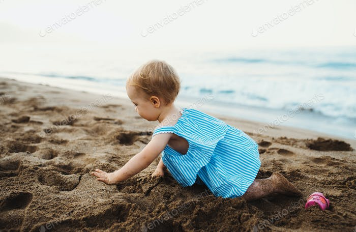 A small toddler girl crawling on beach on summer holiday, playing.