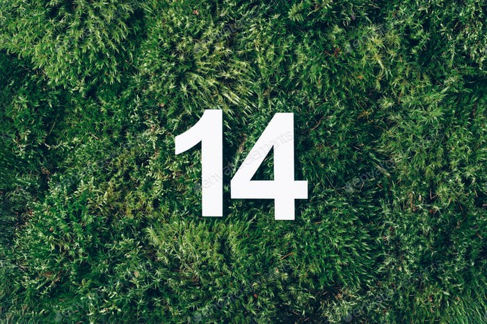 digit fourteen. Numerical digit