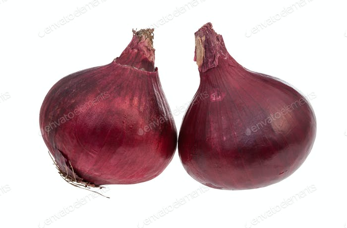 side view of two bulbs of ripe red onion isolated