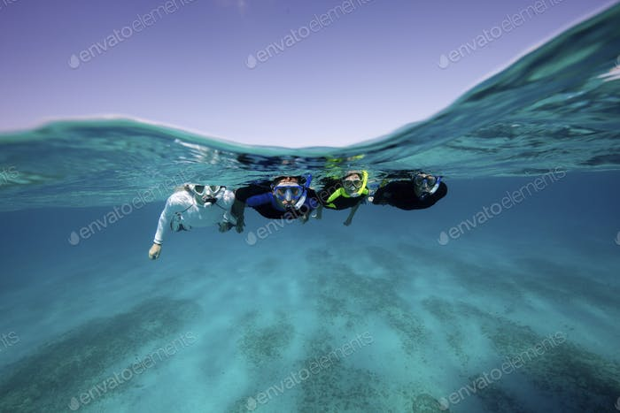 Snorkelers at the surface.,Snorkelers in the Caribbean.