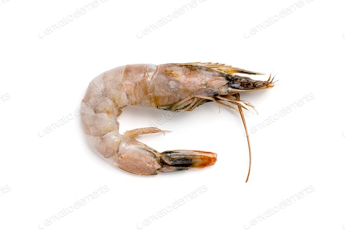 Fresh royal shrimp close-up on a white background.