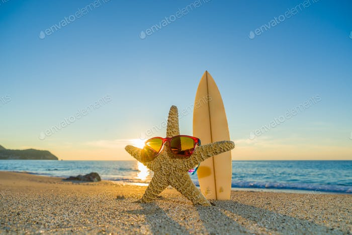 Starfish with sunglasses  on the beach