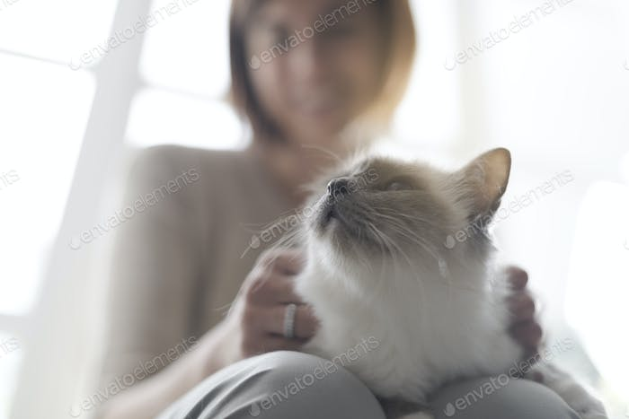 Woman holding a cute cat on her lap