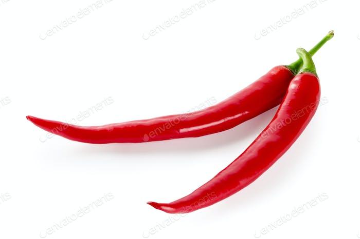 Zwei rote Paprika