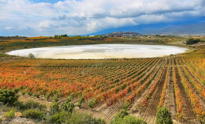 Autumn Vineyards and dry Carralogrono lake with Laguardia village at background, Spain