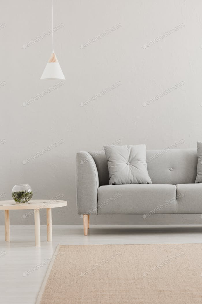 Grey lounge in real photo of bright living room interior with wh