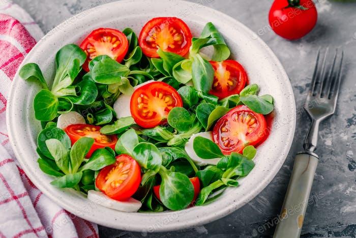 saludable ensaladera verde con tomate y mozzarella sobre Fondo rústico